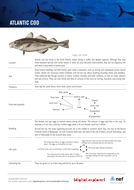 sf-fs-cod.pdf