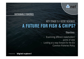 sci-2-a-future-for-fish-and-chips.pdf