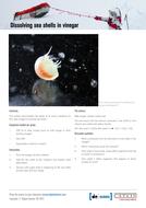 dissolving-sea-shells-in-vinegar.pdf