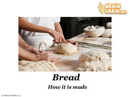 Bread: How it is made POWERPOINT & ACTIVITY