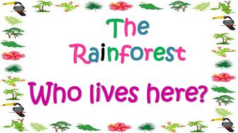 amazon rainforest poem for kids