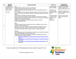Parts of a plant & a tree lesson plan & worksheet by ...