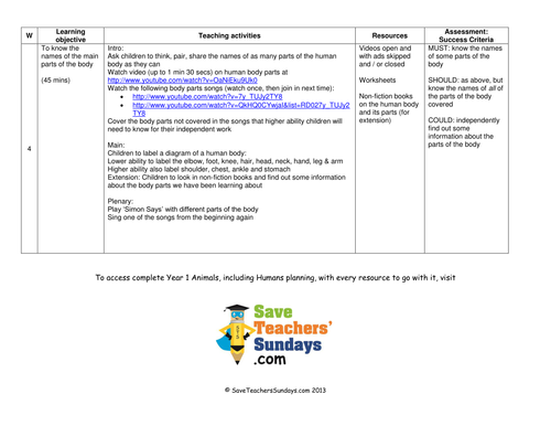 Parts of the Body lesson plan and worksheets by SaveTeachersSundays ...