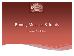 L2 Joints.pptx