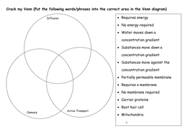 Active transport worksheets by katieball teaching resources tes membrane transport crack my venn kbc membrane transport summary worksheet ccuart Choice Image