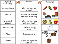 Printables Food Group Worksheets intro to food groups and differentiated worksheets by seasquirt introduction ppt types ws ppt