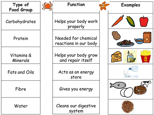 Printables Food Groups Worksheets intro to food groups and differentiated worksheets by seasquirt teaching resources tes
