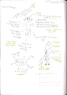 Pupil C Exemplar.pdf