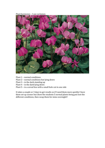 Plant Tropisms Practical By Ew2697 Teaching Resources Tes