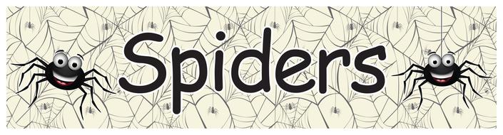 Spiders Display Header.pdf