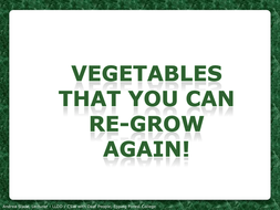 Regrowing Vegetables PDF(1).pdf