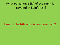 The importance of the Rainforest