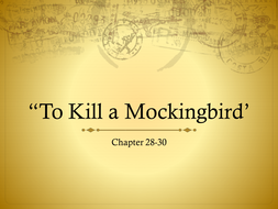 to kill a mockingbird chapter 28 full text