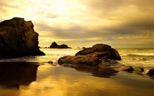beach-in-sepia.jpg