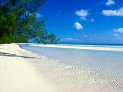 beach in colour.jpg