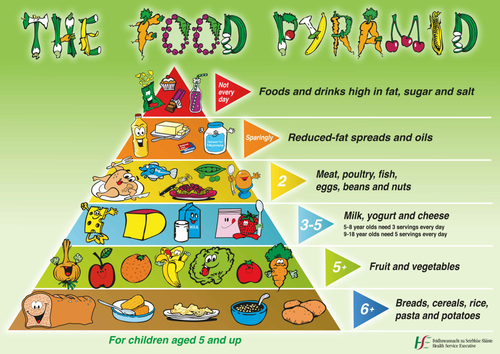 Guide To Good Food Chapter  Activity D