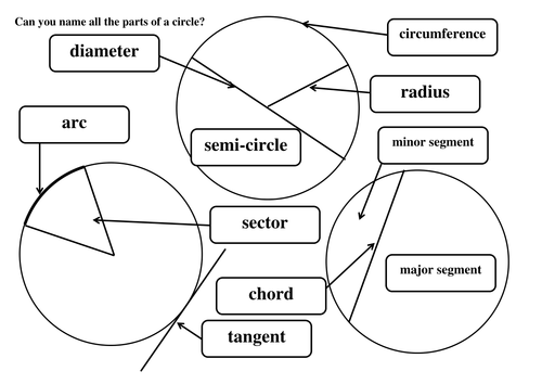 Label Parts of A Circle by Maths Tiger Teaching Resources TES – Parts of a Circle Worksheet