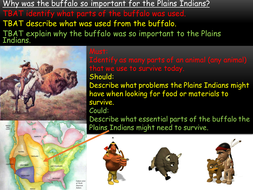 the importance of the buffalo