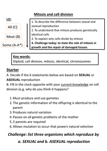 Mitosis and cell division by aimz1990 - Teaching Resources - Tes