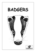 Other ks2-badgers[1].pdf (464 KB, Adobe Acrobat)