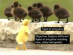 Types of Prejudice L2 2016.pptx