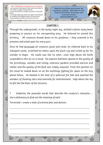 Year 5 reading comprehension worksheet