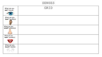 Senses Grid