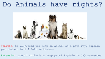 Lesson 2 - Do Animals have rights.pptx