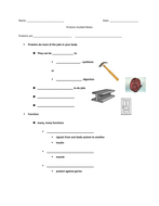 Proteins Guided Notes and Comp Ques 2013-14.docx