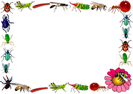 Insects Themed Lined Paper and Pageborders