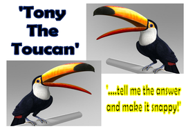 Greater Than or Less Than by 'Tony the Toucan'