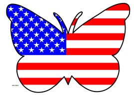 Butterfly Themed USA Flag
