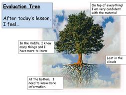 Evaluation Tree.pptx