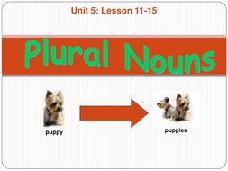 Unit 5 Lesson 11-15 Plural Nouns.ppt