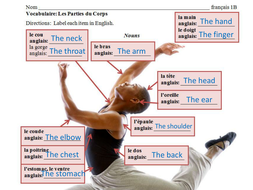 Health and Wellness Vocabulary Lessons