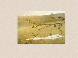 Andrew Wyeth - 15 Slides