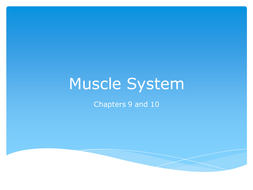 Muscle.ppt