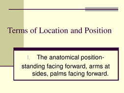 Terms_of_Location_and_Position.ppt
