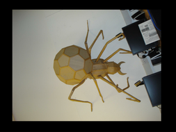 Cardboard bugs/scuplture