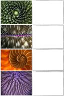 Lesson 2 - Nature Close Ups.jpg