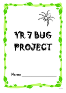 Bugs Design Process - Differentiated.doc