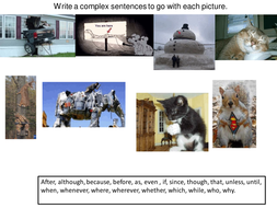 complex sentence activity day one.ppt