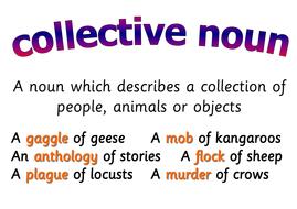 E 37 - Collective Noun.pdf
