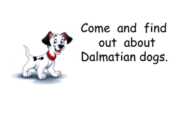 dalmatian dogs PowerPoint