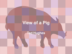 View of a Pig.ppt