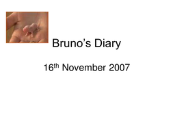 Bruno's diary.ppt