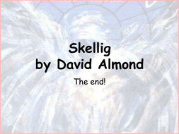 Skellig- the end of the novel