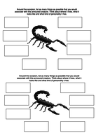 Night of the scorpion starter activity