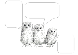 Owl Babies Resources