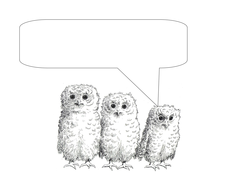 Owl Babies plus speech bubbles x1.doc